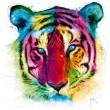 Muricano colourful Tiger picture with mirror surround